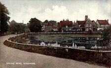 Stanmore. Spring Pond.