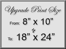 """Upgrade 8""""x10"""" purchase to a 18""""x24"""" Large Signed Print"""