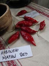 Habanro Maya Red Chili 5+ seeds
