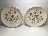 2 SHEFFIELD ''STRAWBERRIES 'N CREAM'' STONEWARE COLLECTION DINNER PLATES 10 7/8'