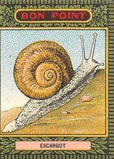 BON POINT Blédine - Escargot
