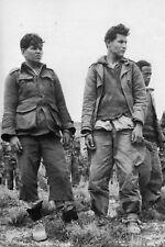 Guerre d'Algérie - Soldats de l'ALN prisonniers des militaires français