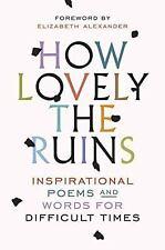 HOW LOVELY THE RUINS - SPIEGEL & GRAU (COR)/ ALEXANDER, ELIZABETH HC