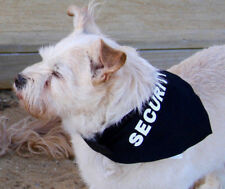 Security dog bandana on dog collar, new, small - large