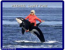 Funny Killer Whale Paula Dean Ride Refrigerator / Tool Box Magnet Man Cave