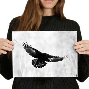 A4 - Flying Black Raven Crow Bird Poster 29.7X21cm280gsm #21240
