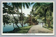North Coast Road TRINIDAD Rare Antique West Indies PC ca. 1910S