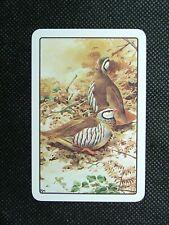 1 x Joker playing card single swap Birds Red legged Partridge (RM) ZJ1622