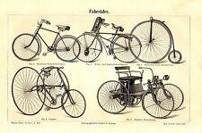 1899= VELOCIPEDI = Antiche Biciclette = Stampa Antica = Old Engraving