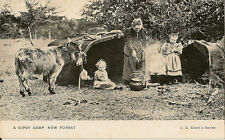Hampshire Single Collectable Social History Postcards