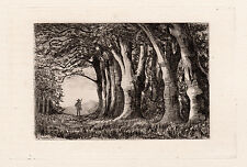 "1800s Philip Gilbert HAMERTON ORIGINAL Etching ""The Beeches"" FRAMED Signed COA"