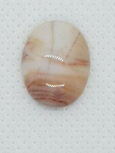 Ocean Jasper Peach Hued Oval Cabochon 10 TCW  Natural Gemstone