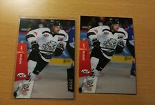 2 Marco Pfleger Straubing Tigers DEL Playercards 2014/15