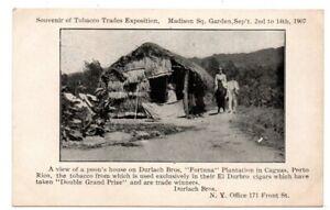PR Puerto Porto Rico Caguas Fortuna Plantation Tobacco Durlach Brothers Postcard