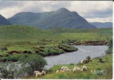 Ireland: County Mayo - Posted 1994