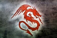 "high quality 36x24 oil painting handpainted on canvas "" dragon""NO406"