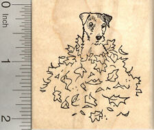 Jack Russell Dog Rubber Stamp, in Autumn Leaf Pile Aka Parsons Terrier J22814 Wm