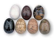 One Real Marble Polished Egg - Poultry Keepers ,Broody hen - Chickens , eggs