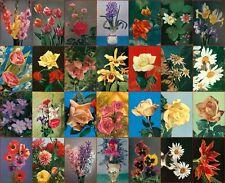 28 cartoline fiori anni 50   postcards flowers non usate