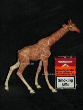 +# Ki1899_12 Goebel Archiv Muster Serengeti Giraffe Girafe 36-307 Plombe
