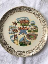 Vintage Ceramic Texas Plate