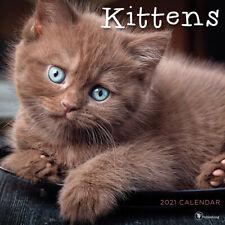 2021 Kittens Wall Calendar