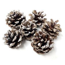 coronas de flores floristería Boda 100 conos de pino abeto Grande 5-8 cm Craft