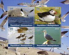 Madagascar 2018 CTO Sea Birds Puffins Gannets Gulls Seagulls 4v M/S Stamps