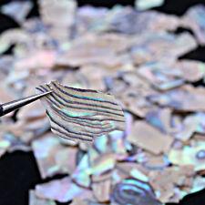 Beauty Nail Art Natural Sea Shell Slices Particle Pearl Light Crushed Decor DIY