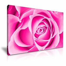 Large Pink Rose Flower Canvas Wall Art Picture Print 76cmx50cm