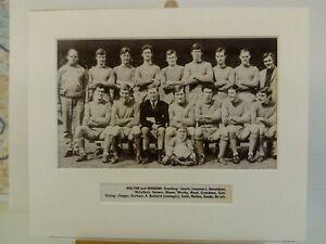 Amateur football team print WALTON & HERSHAM F.C.