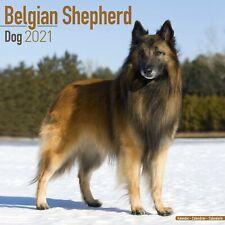 Belgian Shepherd Dog Calendar 2021 Premium Dog Breed Calendars