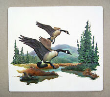 Vintage 1970's Fred Sweney Canada Geese Formcraft Vacuum Form 3D Print 3