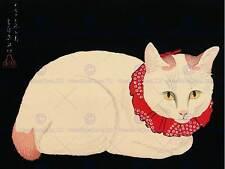 JAPAN NATURE CAT WHITE Shotei Takahashi TAMA POSTER ART PRINT BB48B