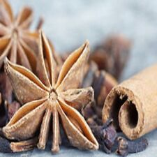 Cinnamon Clove Fragrance Oil Candle/Soap Making Supplies *Free Shipping *