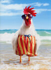 Rooster Wears Swimsuit Funny Birthday Card - Greeting Card by Avanti Press photo