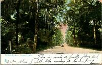 Vtg Postcard 1907 Lovers; Lane Mobile, Alabama - Tuck's Raphotype UDB