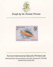 Belize 5107 - 1984 MARINE LIFE 5c  imperf on Format International PROOF  CARD