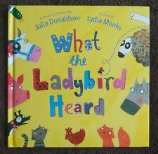 What the Ladybird Heard Childrens Book