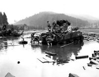 B&W WW2 Photo WWII M4 Sherman Tank Stuck in Mud US Army World War Two Armor