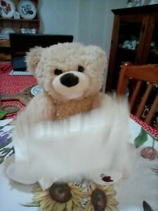 Gund peek a boo bear With Sound And Movement. Used.