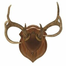Antler Mount Cover
