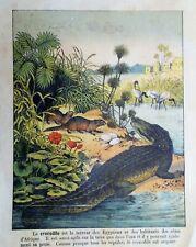 Le crocodile d/'alligator de batterie de véhicule de 2XCar pince l/'essai de pince