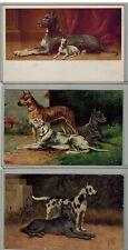 New listing Great Dane, F.Y.W., M.M. Vienne, K.&B.,D. - Vintage Dog Postcard Lot of 3