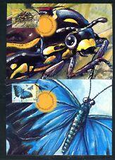 2003 Bugs & Butterflies - Maxi Cards (6)