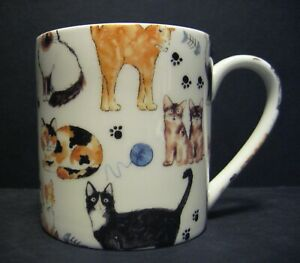 Extra Large Fine Bone China One Pint Pot Mug Cats Kittens Chintz By Crown Trent