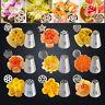17 Pcs Russian Flower Cake Icing Piping Nozzles Decorating Tips Baking Tools Set