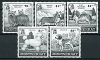 Montserrat Dogs Stamps 1999 MNH Poodle Beagle King Charles Spaniel Corgi 5v Set
