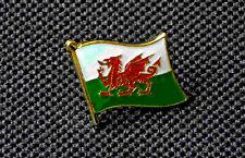 Bathodyn /'Cofiwch Dryweryn/' Enamel Pin Badge