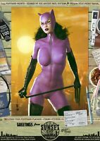 Jim Balent's Catwoman Sexy Gotham 'Sunset City' Signed A3 Comic Print Batman DC